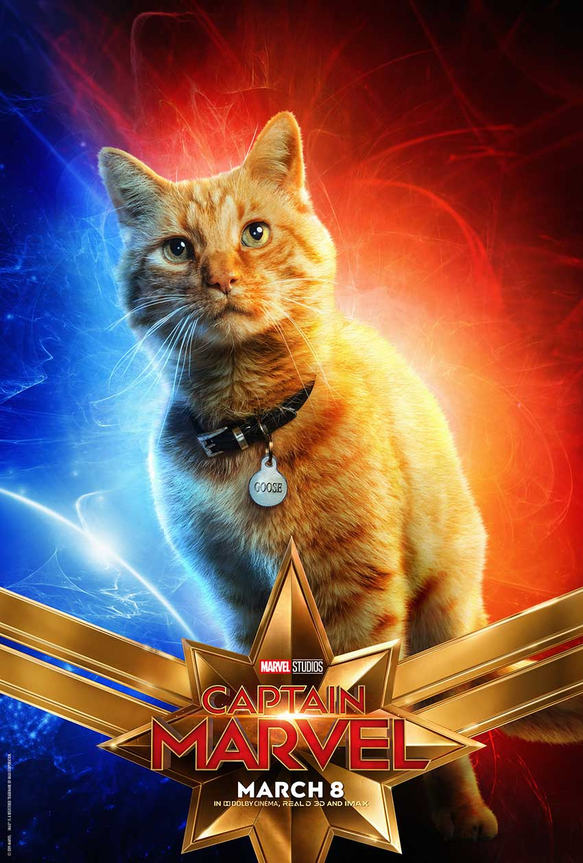 Captain Marvel Goose Cat poster