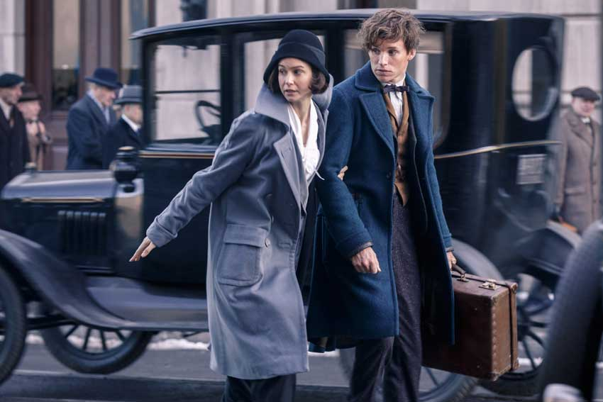 Fantastic Beasts and Where To Find Them Eddie Redmayne Katherine Waterston